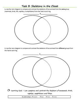 Vertebrates vs Invertebrates (Diversity of Life Activity 3)