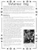 Veterans Day Reading Comprehension & Graphic Organizers Pack