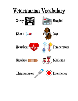 Veterinarian Writing Center/Activity & Vocabulary List