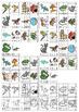 Vi sorterer 22: Kjæledyr [BM&NN]