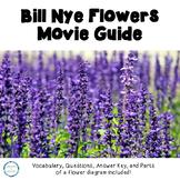 Video Worksheet Bill Nye Flowers
