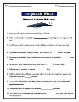 Video Worksheet/Quiz - Humpback Whales IMAX