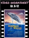 Video Worksheet/Quiz - Humpback Whales IMAX