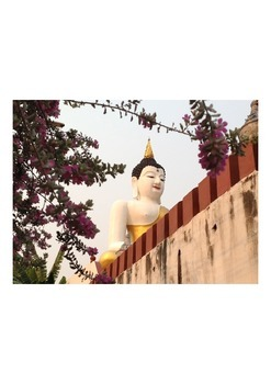 Videos Buddha statue,flowers and insect  (34 sec)