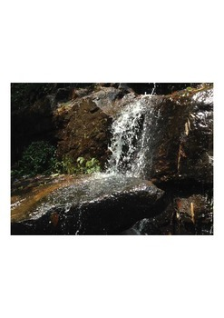Videos Waterfall in tropical forests Part 1 (0.14 sec)