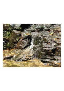 Videos Waterfall in tropical forests Part 4 (0.14 sec)