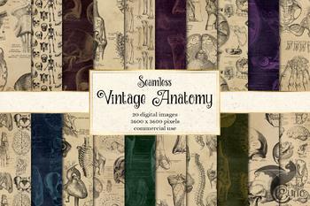 Vintage Anatomy Digital Paper