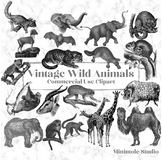 Vintage Animal Illustration Clipart Bundle, Antique Wild Animals