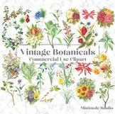 Vintage Botanical Clipart, Antique Digital Flower Illustrations Bundle