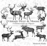 Vintage Deer Clipart, Reindeer, Moose, Stag Digital Illustrations Bundle