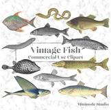 Vintage Fish Clipart Bundle, Digital Antique Fish Images