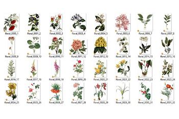Vintage Flower Clipart