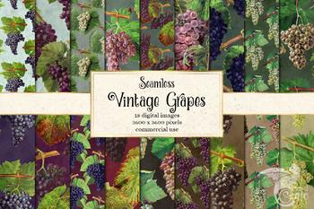 Vintage Grapes Digital Paper