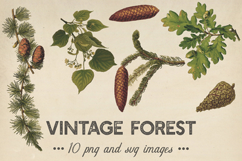 Vintage Plants Clipart, Shabby Forest Plants, Scrapbook Pages, Old Vintage Style