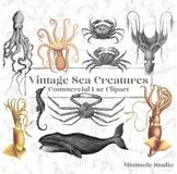 Vintage Sea Creature Clipart, Squid, Octopus, Crab, Whale Bundle