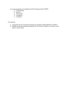 Viral & Bacterial Genetics Test / Quiz