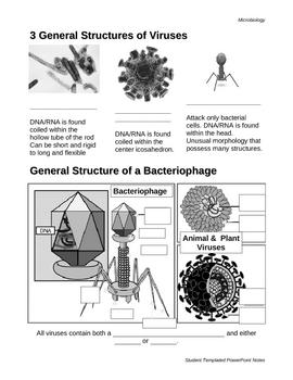 Viral Structure PPT - Student Worksheet