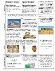 Ancient Greece, Rome, and Mali Study Guide