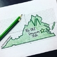 Virginia Coordinate Graphing Picture 1st Quadrant & ALL 4 Quadrants