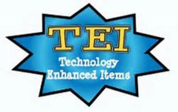 TEI English Standardized Test Prep