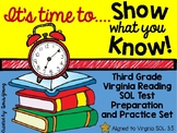 Virginia SOL Third Grade Reading Test Practice Pages