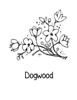 Virginia State Coloring Pages