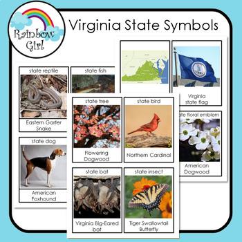 Virginia State Symbols Cards By Rainbow Girl Teachers Pay Teachers