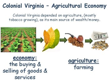 VA Studies: Colonial Virginia Lesson & Flashcards- study guide, exam prep