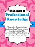 Virginia Teacher Evaluation Portfolio Pink and Blue