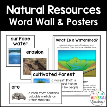 Virginia's Natural Resources Word Wall Set (SOL 4.9)