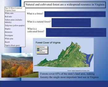 VA 4th Grade Science SMARTboard Lesson - Virginia's Natural Resources - SOL 4.8