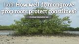 Virtual AICE Marine Science Lab: Mangroves vs Sandy Beach