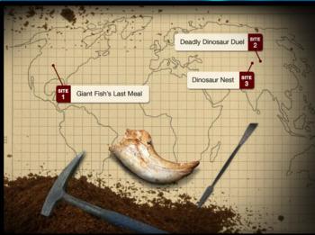 Virtual Dig Comprehension Questions