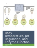 Virtual Lab: Body Temperature, pH Regulation, and Enzyme Function