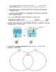 Virtual Lab/Webquest: Gram Stain Bacteria Cells (honors, AP, college prep)