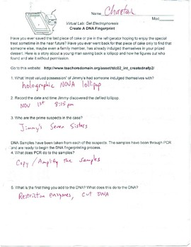 Dna Fingerprinting Worksheet Answer Key Pbs - worksheet