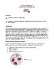Virtual Lab/Webquest Human Blood Types (Honors, AP, College)