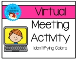 Virtual Meeting Activity - Identifying Colors