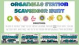 Virtual Organelle Station Scavenger Hunt