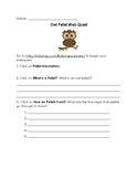 Virtual Owl Pellet Dissection Webquest