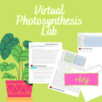 Virtual Photosynthesis Lab- WITH key