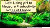 Virtual Remote Lab: Using pH To Track Productivity Rates o