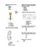 Virus Bacteria Protista Test
