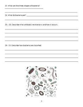 Virus, Bacteria, and Archaea WebQuest