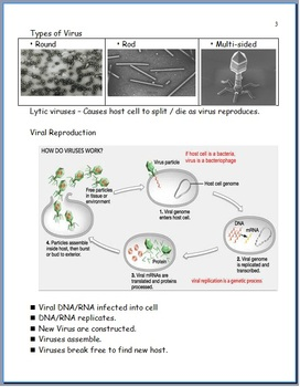 Diseases Unit Homework, Virus, Bacteria