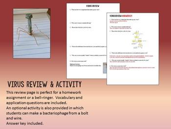 Virus Review & Activity