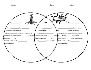 Virus and bacteria venn diagram by activelearning tpt virus and bacteria venn diagram ccuart Image collections