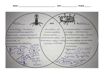 Virus and Bacteria Venn Diagram