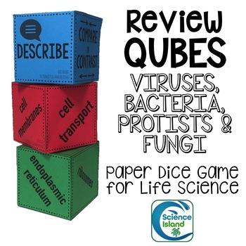 Bacteria Protist Fungi Worksheets Teaching Resources TpT