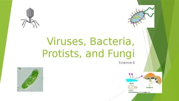 Viruses, Bacteria, Protists, and Fungi - PPT Notes